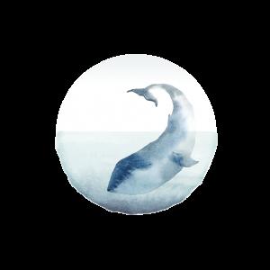 Hotel Disko Island Logo